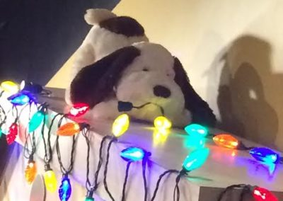 three-dog-bakery-dog-house-christmas-lights-with-stuffed-dog